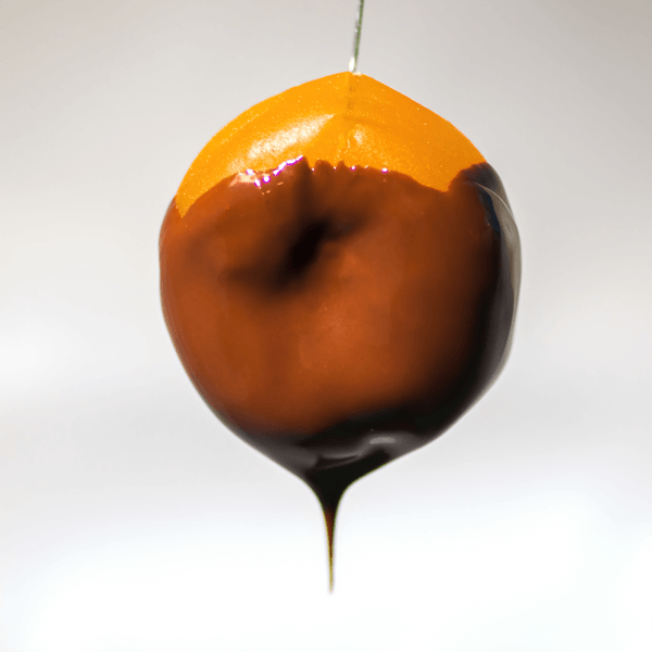 Chocolate Covered Apricot