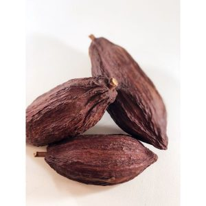 Decorative Cacao Pod